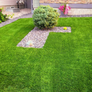 Backyard Astroturf