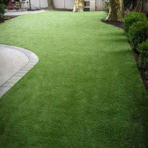 Side Yard Turf