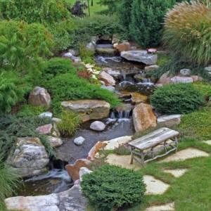 Massapequa Pond Feature
