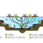 pond filtration system
